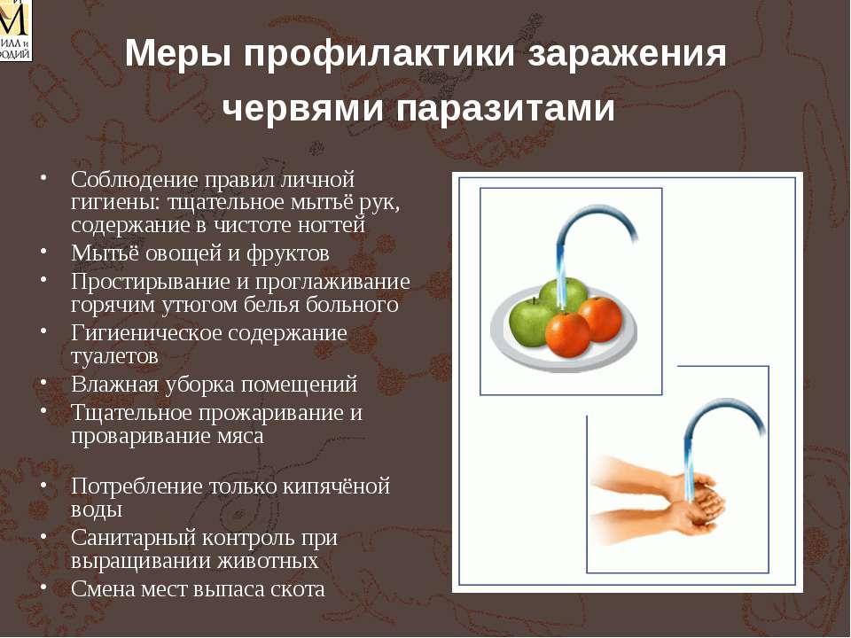 Меры профилактики заражения червями паразитами Соблюдение правил личной гигие...