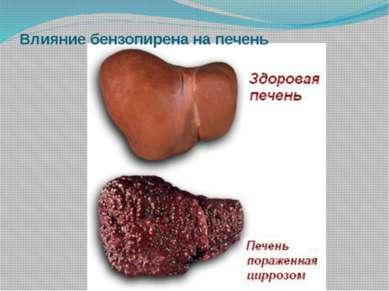 Влияние бензопирена на печень