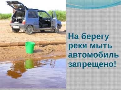 На берегу реки мыть автомобиль запрещено!