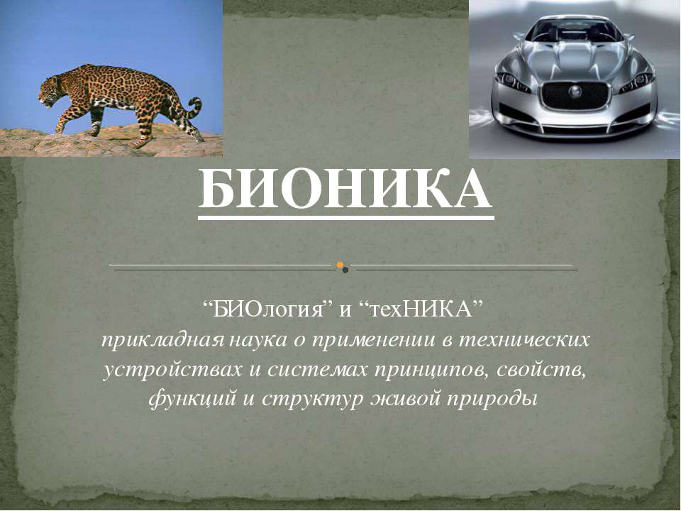 "БИОНИКА ""БИОлогия"" и ""техНИКА"" прикладная наука о применении в технических ус..."