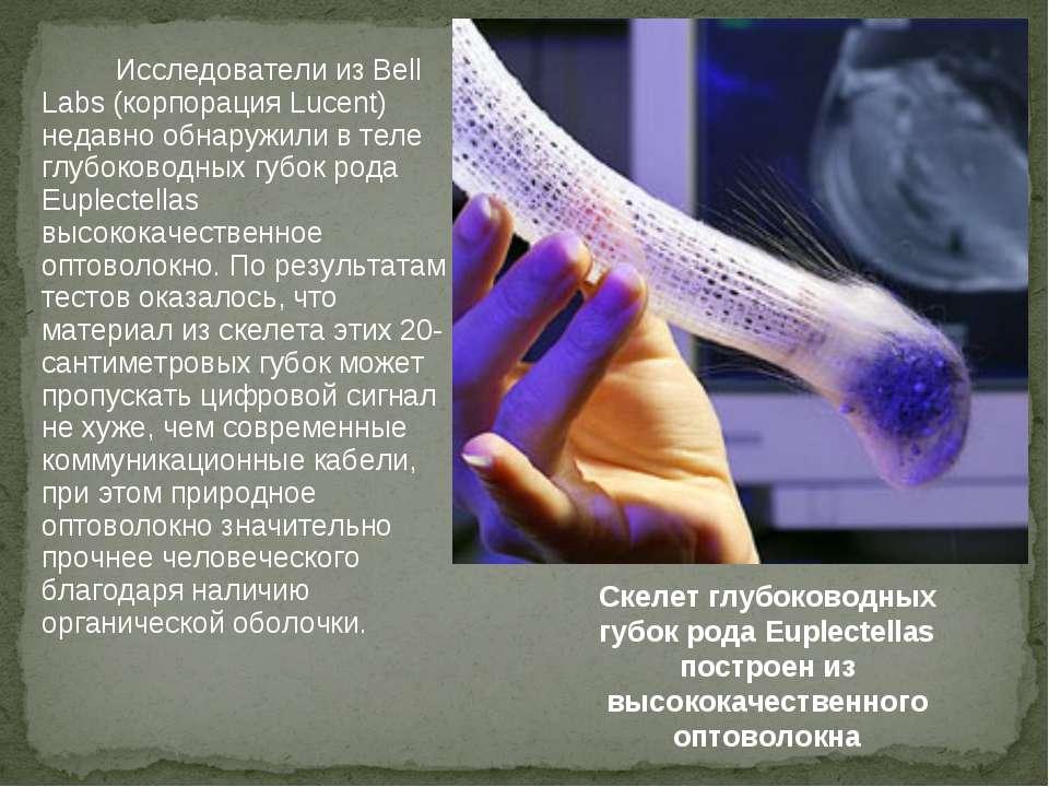 Исследователи из Bell Labs (корпорация Lucent) недавно обнаружили в теле глуб...
