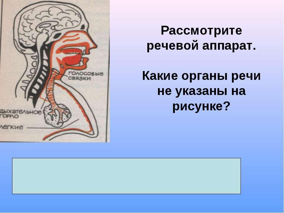 Рассмотрите речевой аппарат. Какие органы речи не указаны на рисунке? ротовая...