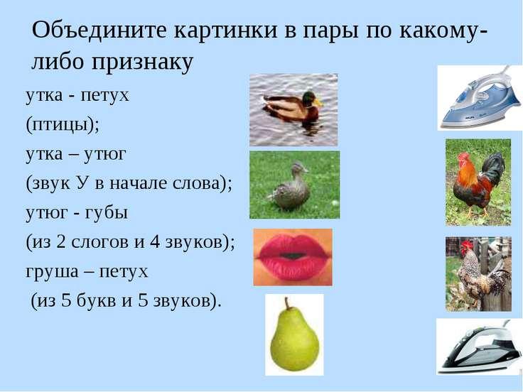 Объедините картинки в пары по какому-либо признаку утка - петух (птицы); утка...