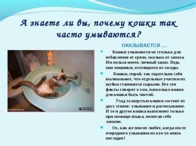 А знаете ли вы, почему кошки так часто умываются? ОКАЗЫВАЕТСЯ … Кошки умывают...