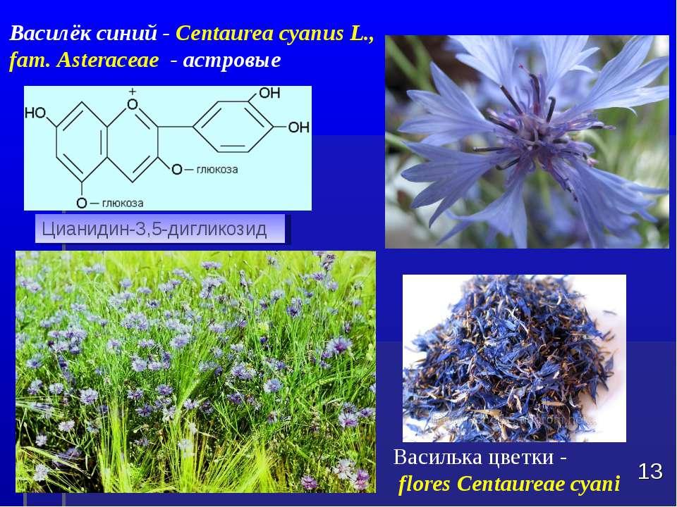 Василька цветки - flores Centaureae cyani * Цианидин-3,5-дигликозид Василёк с...