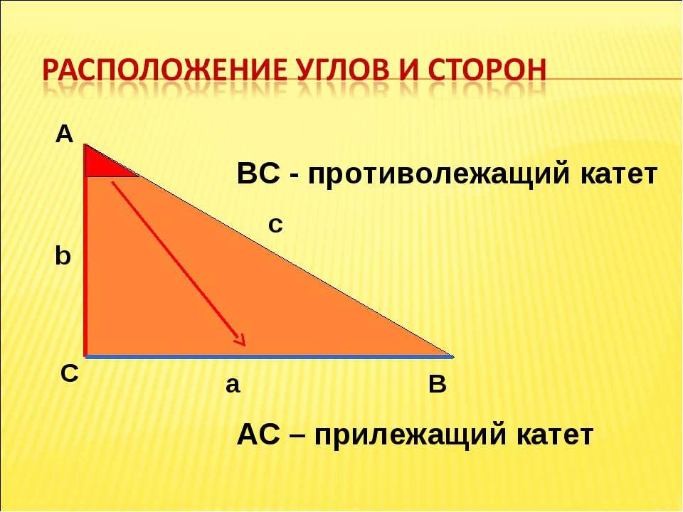 А С В b c a ВС - противолежащий катет АС – прилежащий катет