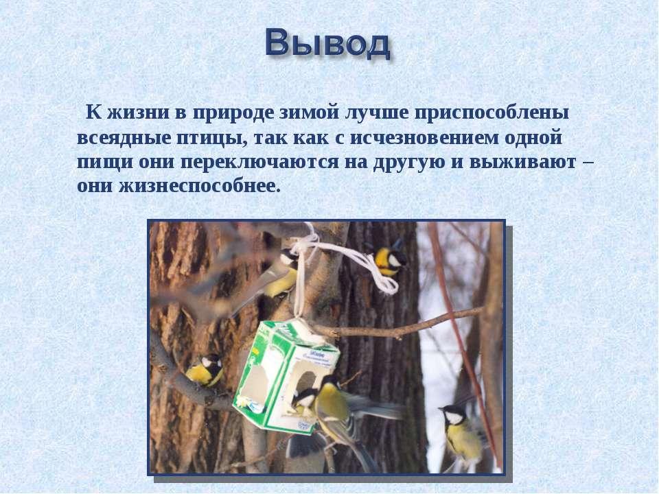 К жизни в природе зимой лучше приспособлены всеядные птицы, так как с исчезно...
