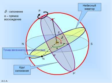 А.С.А. P P' Небесный экватор W E N S Круг склонения ɤ Точка весеннего равноде...