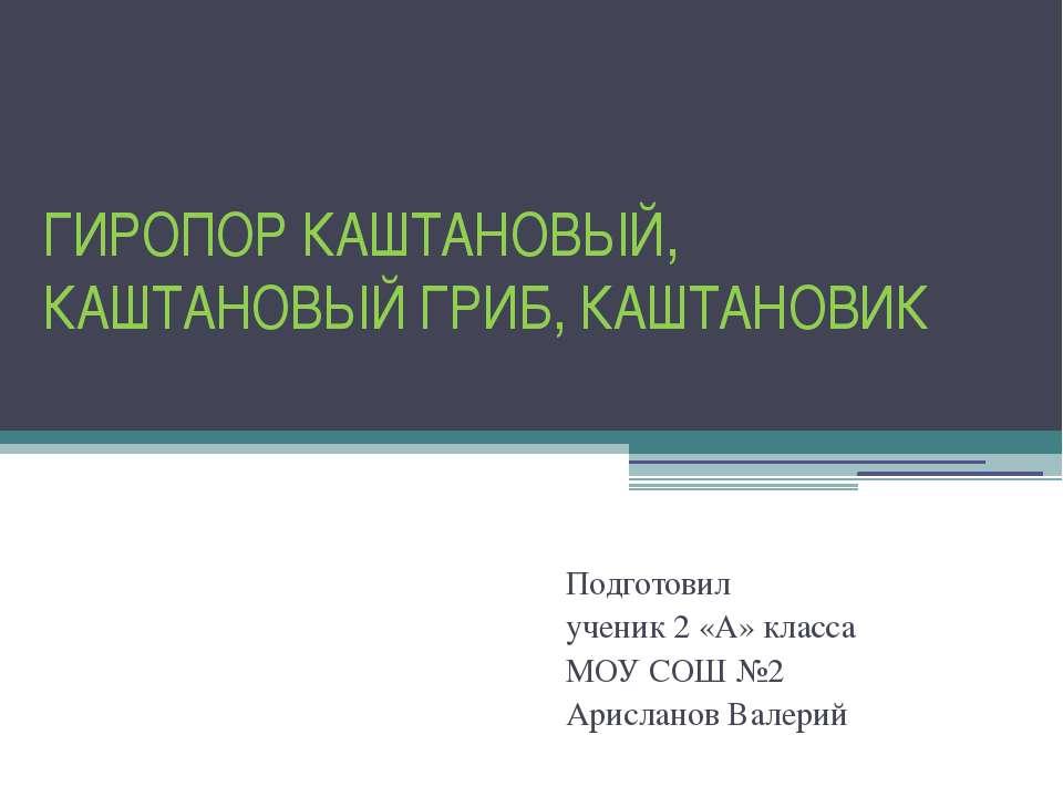 ГИРОПОР КАШТАНОВЫЙ, КАШТАНОВЫЙ ГРИБ, КАШТАНОВИК Подготовил ученик 2 «А» класс...