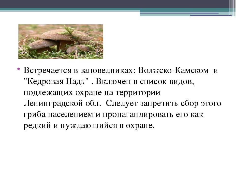 """Встречается в заповедниках: Волжско-Камском и """"Кедровая Падь"""" . Включен в спи..."""