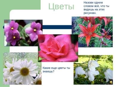 Цветы Назови одним словом всё, что ты видишь на этих рисунках. Какие еще цвет...