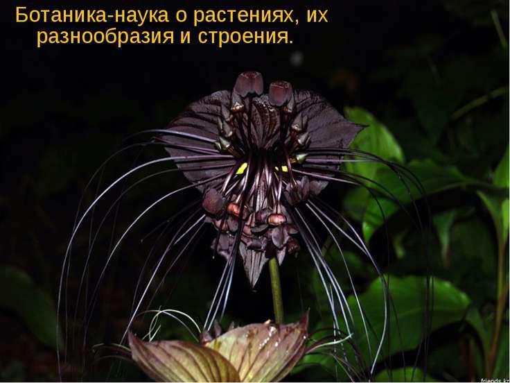 Ботаника-наука о растениях, их разнообразия и строения.