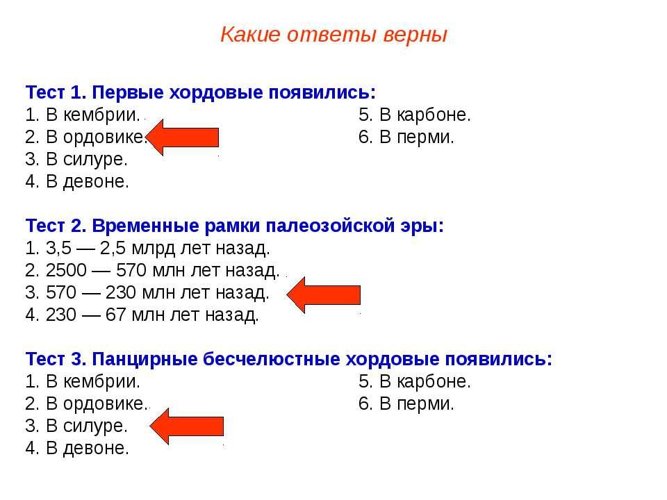 Тест 1. Первые хордовые появились: 1. В кембрии. 5. В карбоне. 2. В ордовике....