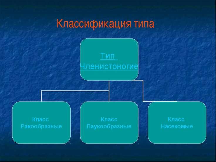 Классификация типа