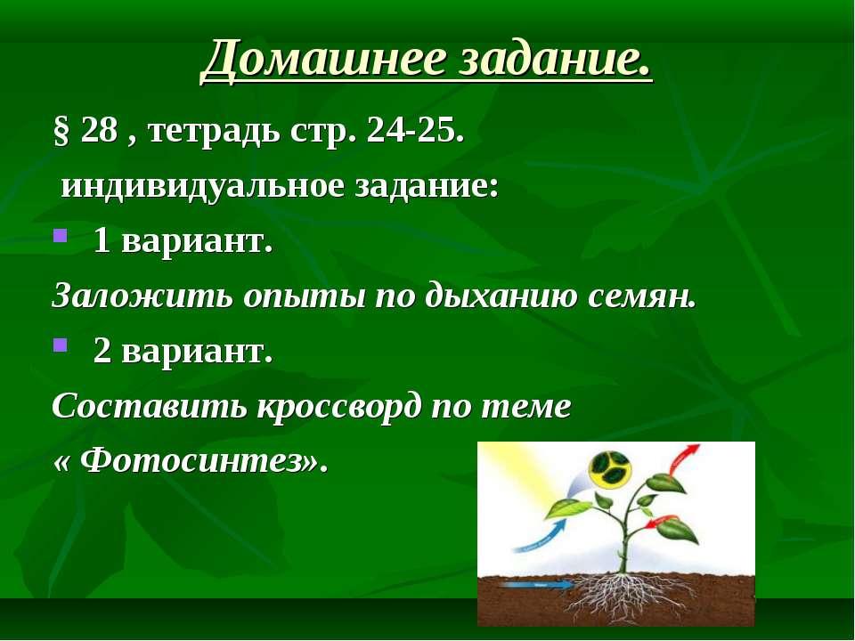 Домашнее задание. § 28 , тетрадь стр. 24-25. индивидуальное задание: 1 вариан...
