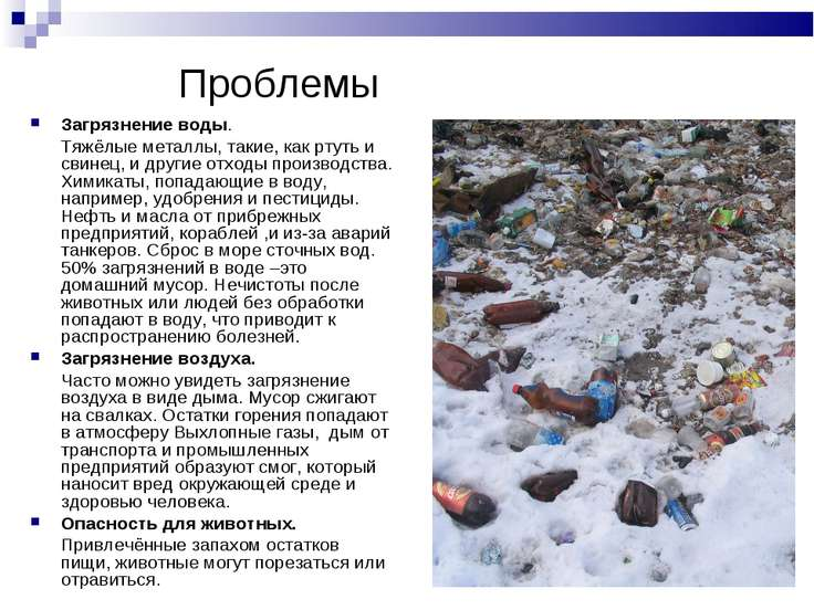 Загрязнение воды. Тяжёлые металлы, такие, как ртуть и свинец, и другие отходы...