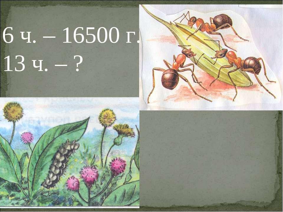 6 ч. – 16500 г. 13 ч. – ?