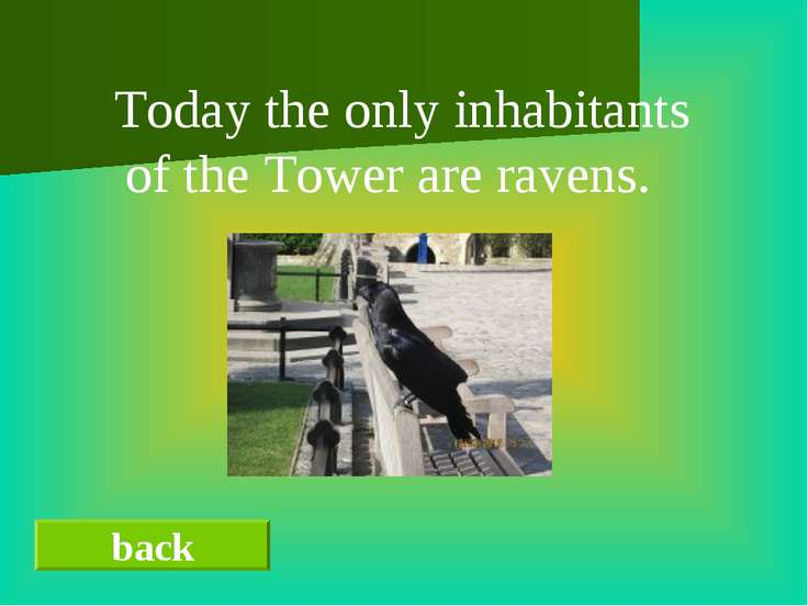 back Today the only inhabitants of the Tower are ravens.