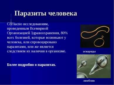 Паразиты человека Согласно исследованиям, проведенным Всемирной Организацией ...