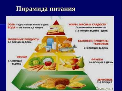Пирамида питания Биомодуль-2