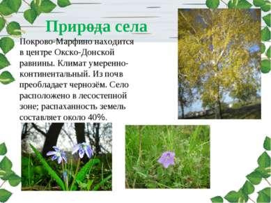 Природа села Покрово-Марфино находится в центре Окско-Донской равнины. Климат...