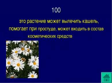 100 это растение может вылечить кашель, помогает при простуде, может входить ...