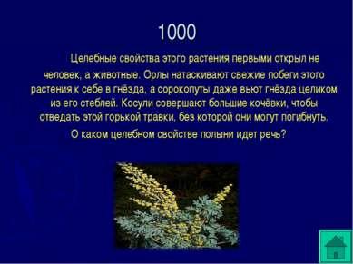 1000 Целебные свойства этого растения первыми открыл не человек, а животные. ...