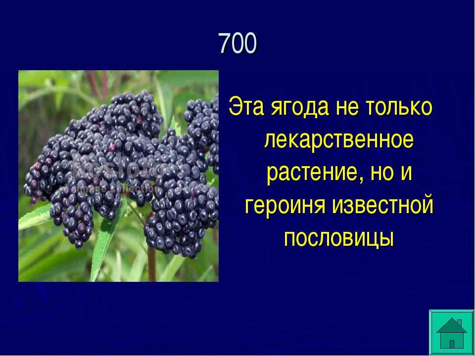 Эта ягода не только лекарственное растение, но и героиня известной пословицы 700