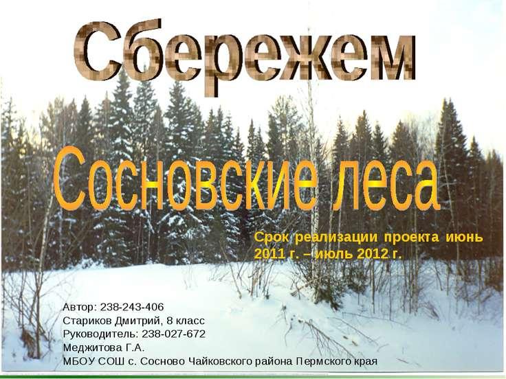 Автор: 238-243-406 Стариков Дмитрий, 8 класс Руководитель: 238-027-672 Меджит...