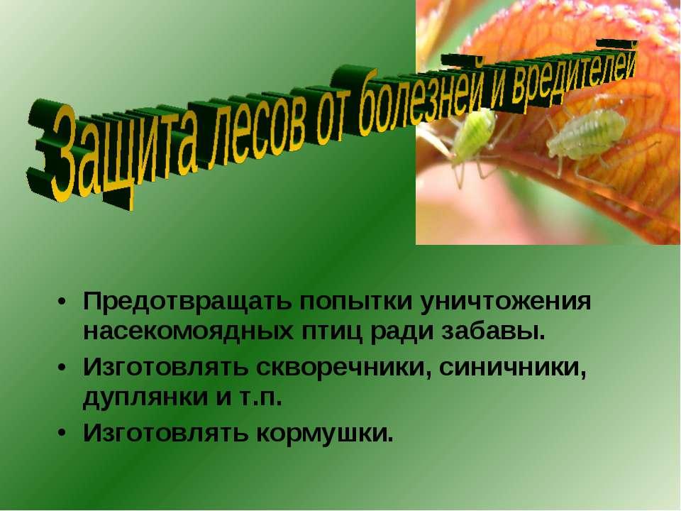 Предотвращать попытки уничтожения насекомоядных птиц ради забавы. Изготовлять...