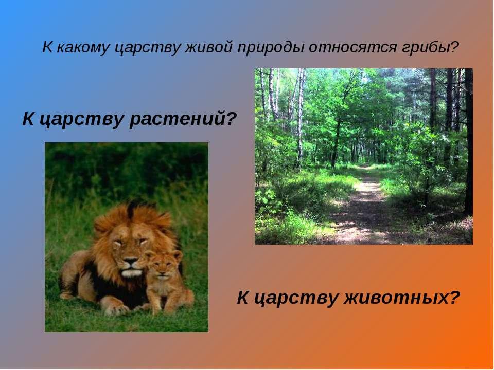 К какому царству живой природы относятся грибы? К царству растений? К царству...