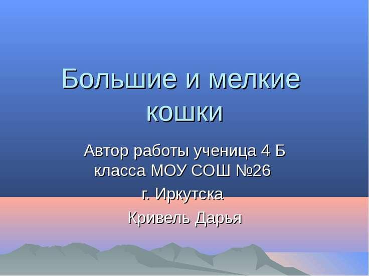 Большие и мелкие кошки Автор работы ученица 4 Б класса МОУ СОШ №26 г. Иркутск...