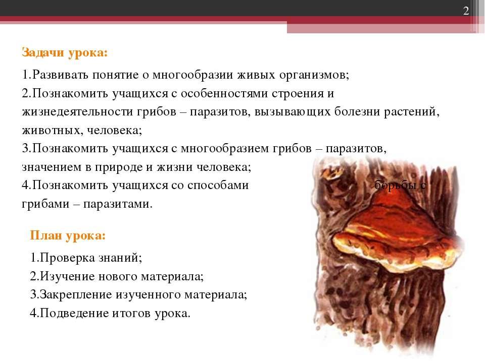 Задачи урока: Развивать понятие о многообразии живых организмов; Познакомить ...