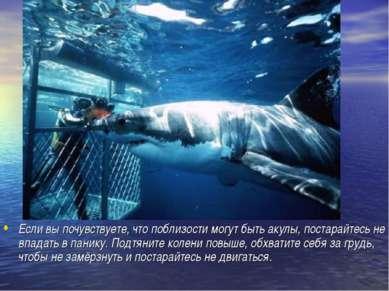 Если вы почувствуете, что поблизости могут быть акулы, постарайтесь не впадат...