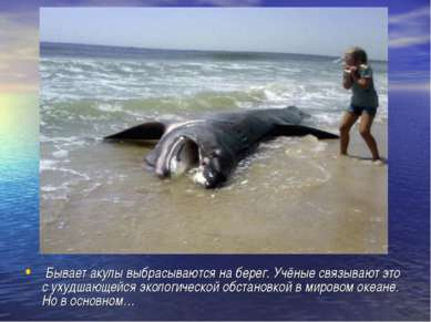 Бывает акулы выбрасываются на берег. Учёные связывают это с ухудшающейся экол...