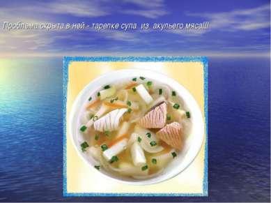 Проблема скрыта в ней - тарелке супа из акульего мяса!!!
