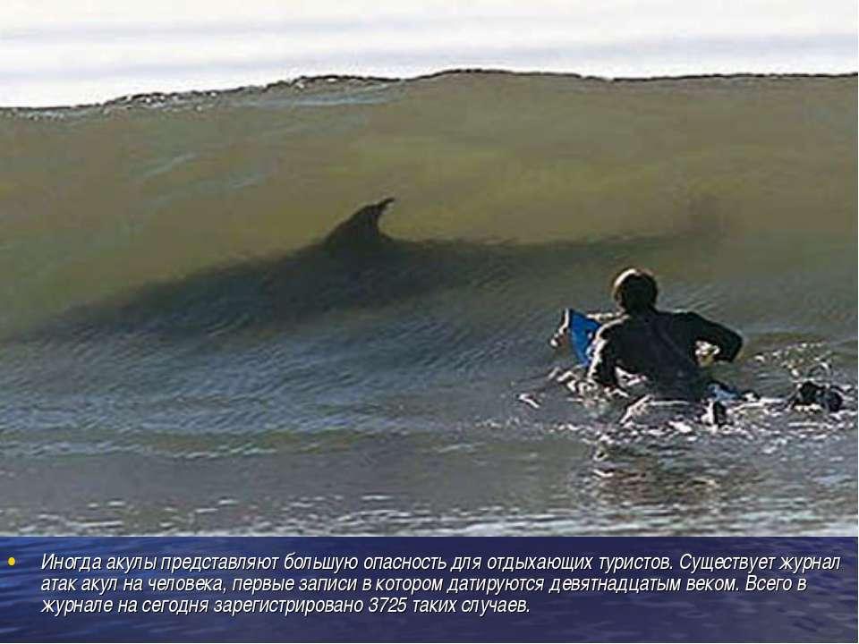 Иногда акулы представляют большую опасность для отдыхающих туристов. Существу...