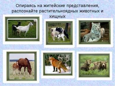 Опираясь на житейские представления, распознайте растительноядных животных и ...