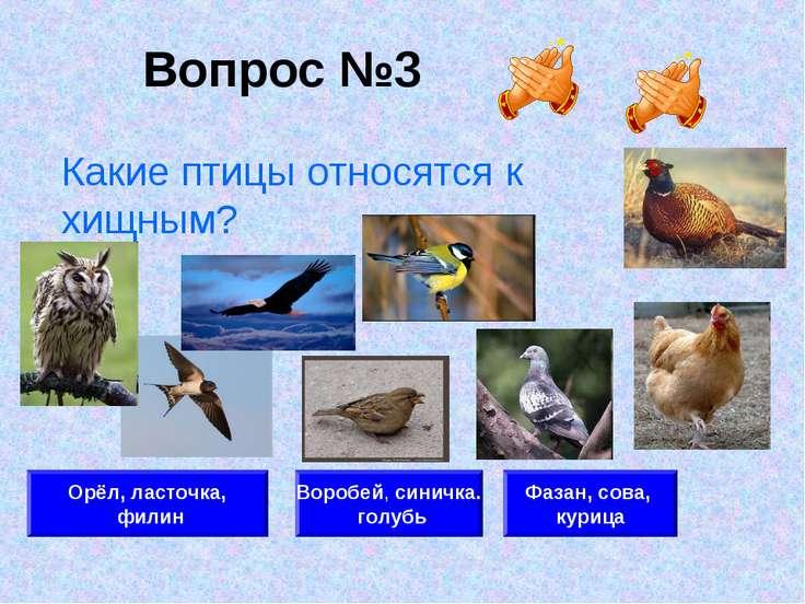 Вопрос №3 Орёл, ласточка, филин Воробей, синичка. голубь Фазан, сова, курица ...