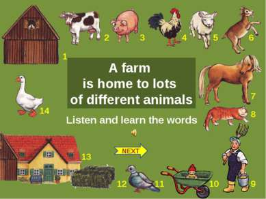 Listen and learn the words NEXT A farm is home to lots of different animals 1...