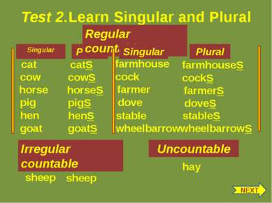 Test 2.Learn Singular and Plural Singular Plural gEEse goose Irregular counta...