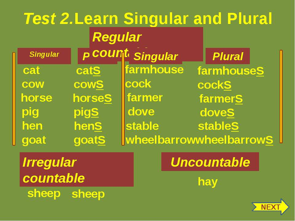 Test 2.Learn Singular and Plural Singular Plural gEEse goose Irregular counta...
