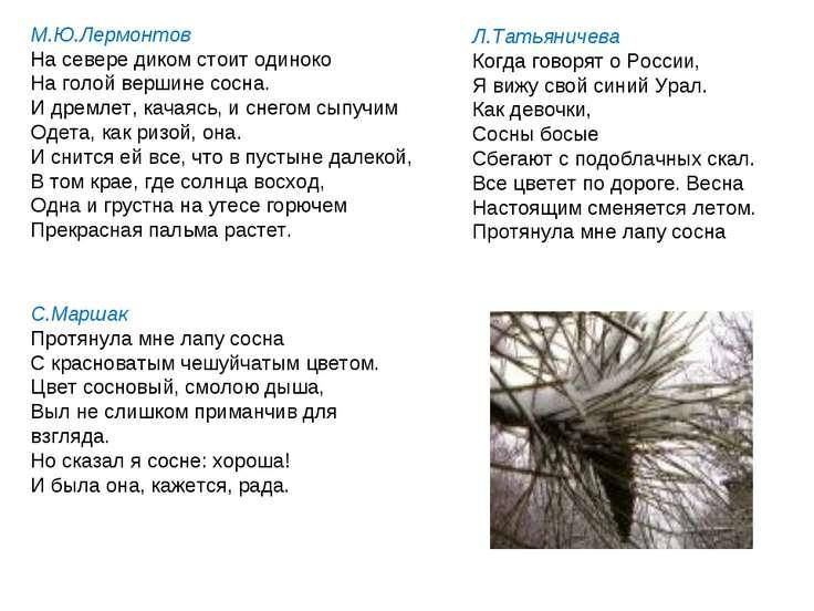 М.Ю.Лермонтов На севере диком стоит одиноко На голой вершине сосна. И дремлет...