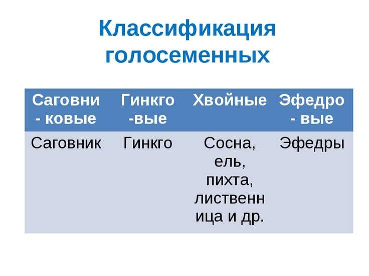Классификация голосеменных Саговни - ковые Гинкго -вые Хвойные Эфедро - вые С...