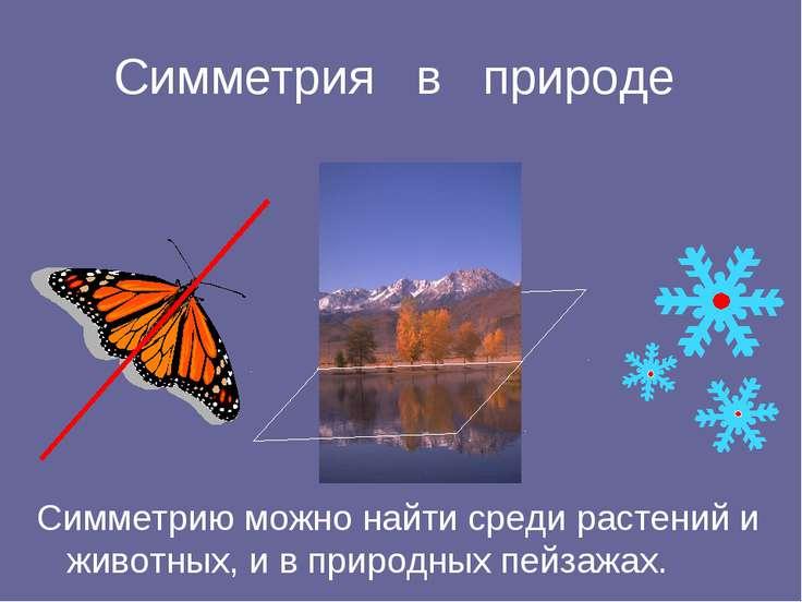 Симметрия в природе Симметрию можно найти среди растений и животных, и в прир...
