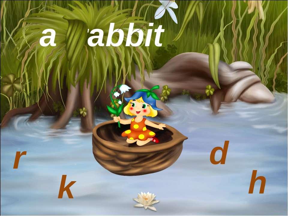 a rabbit r k d h