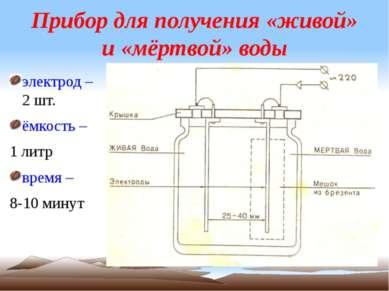 Прибор для получения «живой» и «мёртвой» воды электрод – 2 шт. ёмкость – 1 ли...