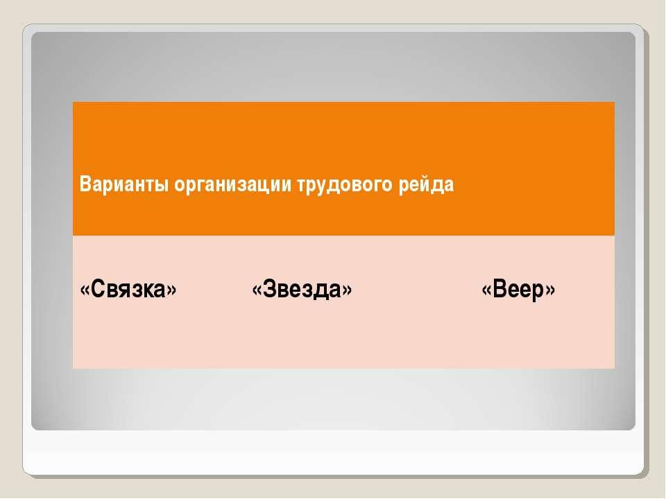 Варианты организации трудового рейда «Связка» «Звезда» «Веер»