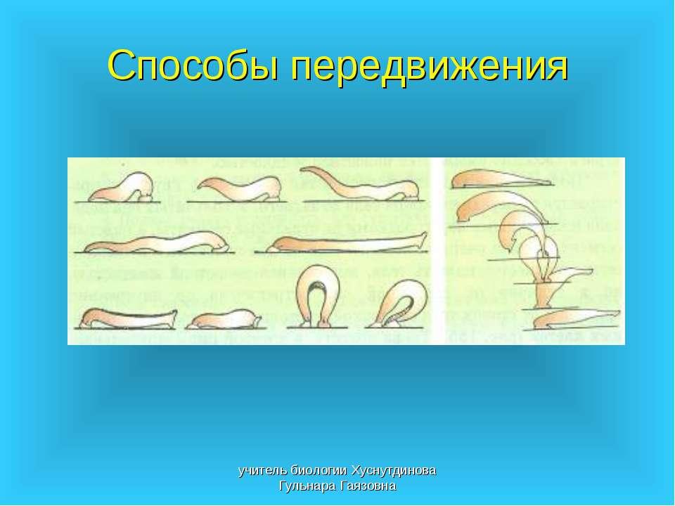 Способы передвижения учитель биологии Хуснутдинова Гульнара Гаязовна учитель ...