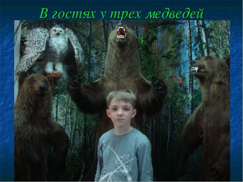 В гостях у трех медведей